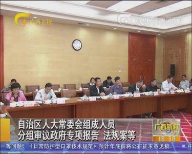 自治区人大常委会组成人员分组审议政府专项报告 法规案等