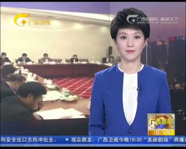 自治区十二届人大常委会第十五次会议分组审议
