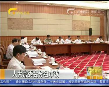 【视频】自治区十二届人大常委会第十九次会议分组审议