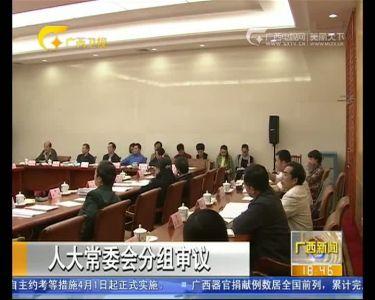 【视频】自治区人大常委会分组审议