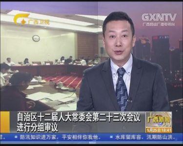 【视频】自治区十二届人大常委会第二十三次会议进行分组审议