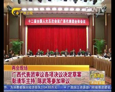 【视频】广西代表团审议各项决议决定草案