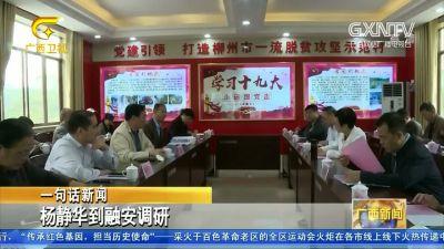 【视频】杨静华到融安调研