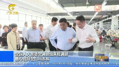 【视频】全国人大常委会调研组来桂调研 鹿心社拜会白玛赤林