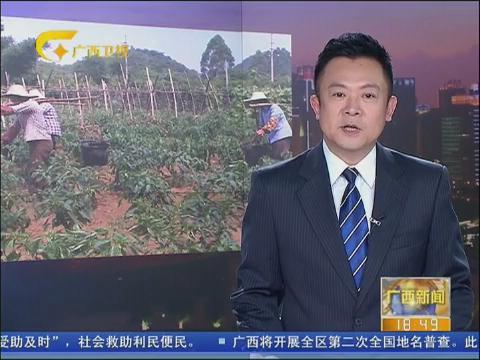 2014年广西环保世纪行――平果县:矿山复垦还地于民  留住一片青山绿水