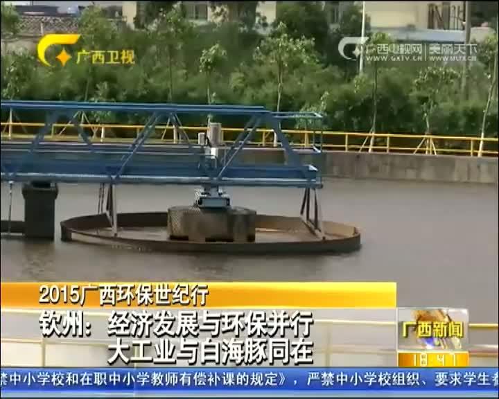 钦州:经济发展与环保并行 大工业与白海豚同在