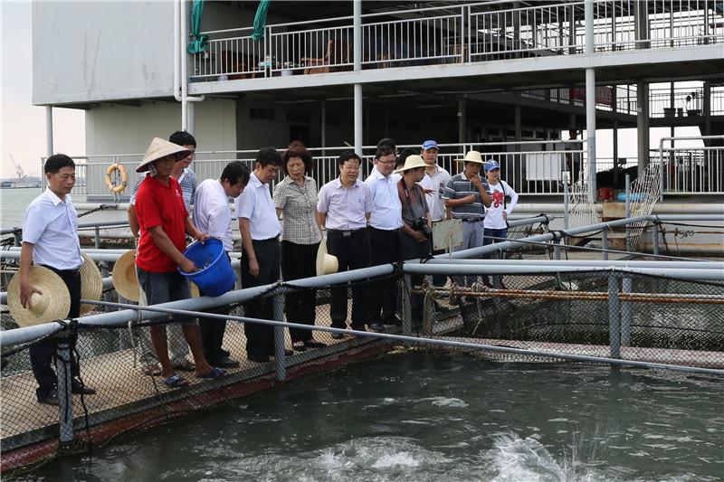 自治区人大常委会专题调研我区现代海洋渔业发展情况