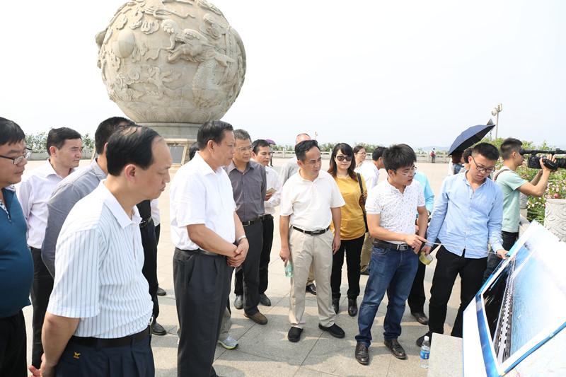 自治区人大常委会副主任杨道喜 调研中越铁路防城港至东兴段项目建设