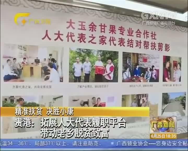 【视频】贵港:拓展人大代表履职平台 带动老乡脱贫致富