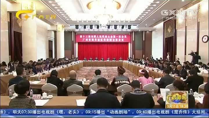 【视频】广西代表团审议宪法修正案草案建议表决稿