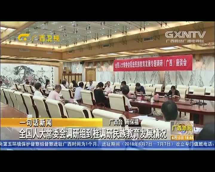 【视频】全国人大常委会调研组到桂调研民族教育发展情况