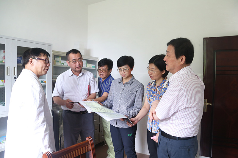 杨静华率队开展第429号代表建议督办工作调研