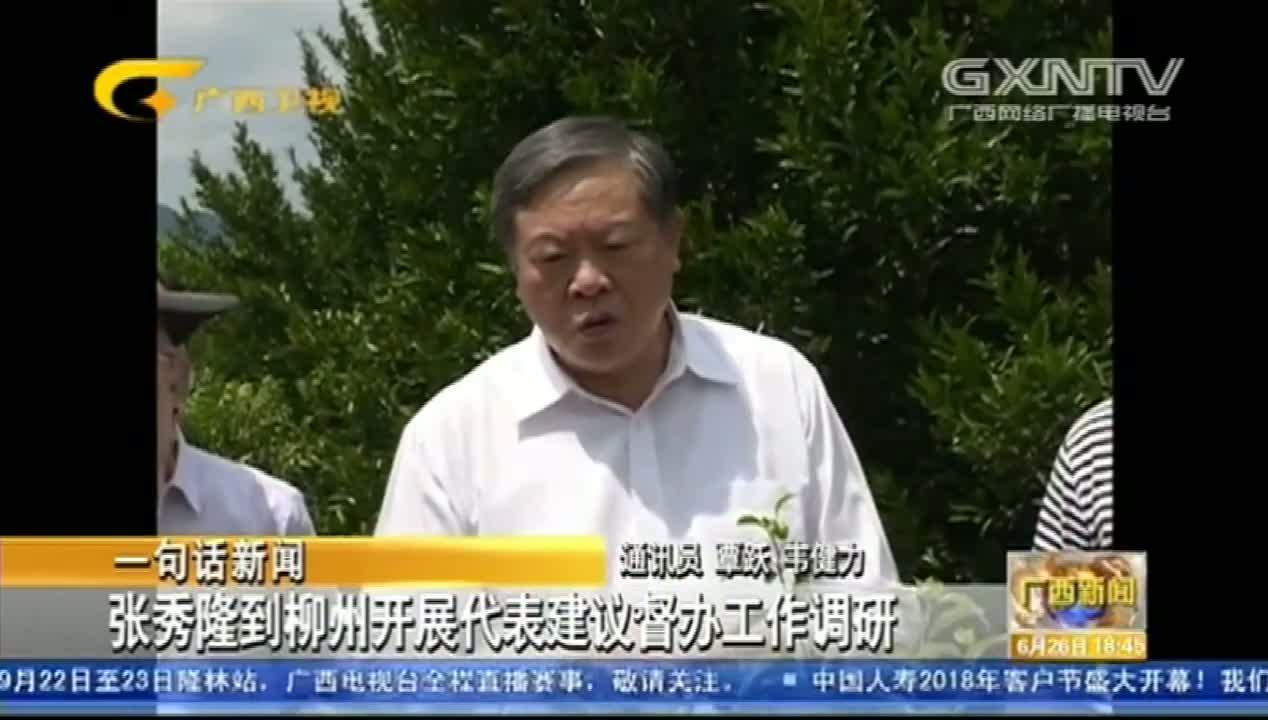 张秀隆到柳州开展代表建议督办工作调研