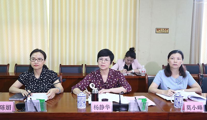 杨静华率队调研南宁空港经济区规划建设重大项目