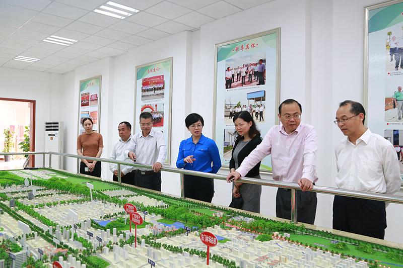 杨静华率队赴扶绥调研南宁空港经济区重大项目