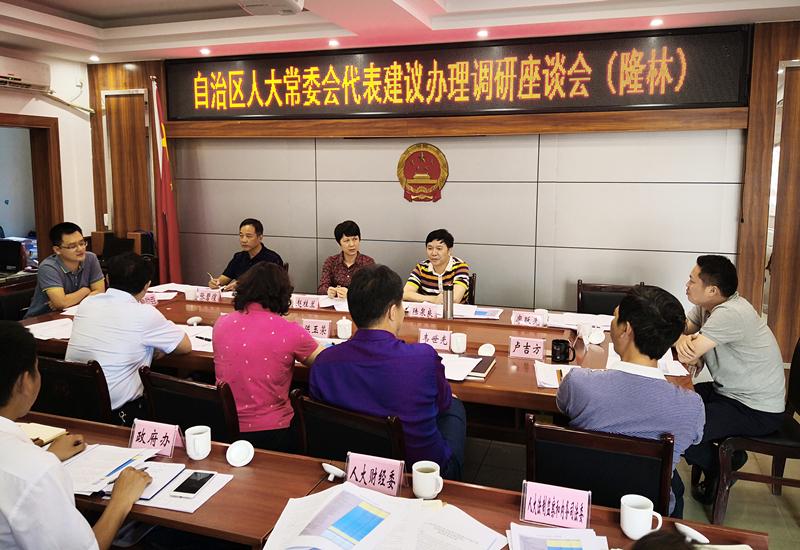 自治区人大民委、财经委开展第251号代表建议办理工作
