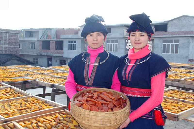 金秀县忠良乡巴勒村红薯干加工厂剪影