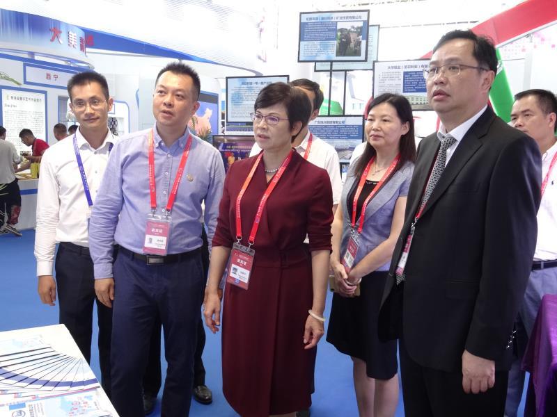杨静华率团参加第一届中国-非洲经贸博览会